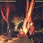 Echo & The Bunnymen Crocodiles