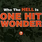 One Hit Wonder Who The Hell Is One Hit Wonder?