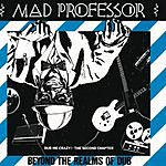 Mad Professor Beyond The Realms Of Dub