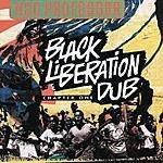 Mad Professor Black Liberation Dub