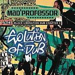 Mad Professor Evolution Of Dub: Chapter 3