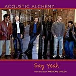 Acoustic Alchemy Say Yeah