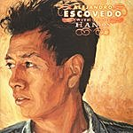 Alejandro Escovedo With These Hands