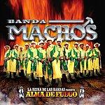 Banda Machos Alma De Fuego