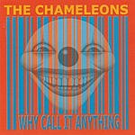 The Chameleons UK Why Call It Anything