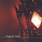 Jair-Rohm Parker Wells Exquisite Noise