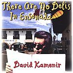 David Kamenir There Are No Delis In Ensenada