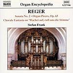 Stefan Frank Organ Encyclopedia: Reger Organ Works, No.5