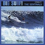 The Sentinals Big Surf