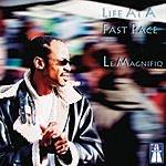 Le Magnifiq Life At A Past Pace