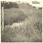 Dan Janisch Weeds