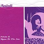 Anjali Nebula