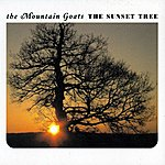 The Mountain Goats The Sunset Tree