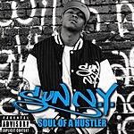Sun-N.Y. Soul Of A Hustler (Parental Advisory)