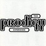 The Prodigy Experience