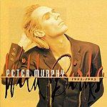 Peter Murphy Wild Birds 1985-1995: The Best Of The Beggars Banquet Years