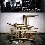 Buffalo Tom Asides From Buffalo Tom (1988-1999)