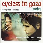 Eyeless In Gaza Voice: The Best Of Eyeless In Gaza