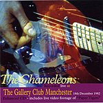The Chameleons UK Live At The Gallery Club, Manchester, 1982