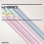 Hybrid I'm Still Awake
