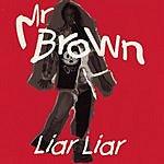 Mr. Brown Liar Liar