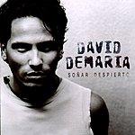 David DeMaria Soñar Despierto