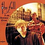 The Fall I Am Kurious Oranj