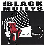 The Black Mollys Overnight Disgrace