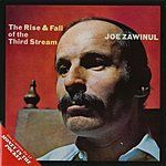 Joe Zawinul Money In The Pocket