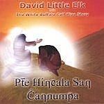 David Little Elk The White Buffalo Calf Pipe