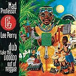 Mad Professor Dub Take The Voodoo Out Of Reggae
