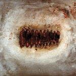 Medeski, Martin & Wood Notes From The Underground