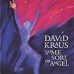 David Kraus Some Sort Of Angel