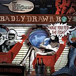 Badly Drawn Boy Have You Fed The Fish?