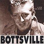 Ken Bott The Blues From Bottsville