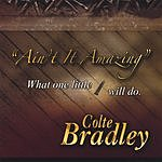 Colte Bradley Ain't It Amazing What One Little Screw Will Do
