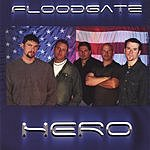 Floodgate Hero