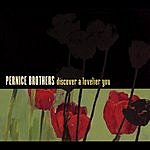 Pernice Brothers Discover A Lovelier You