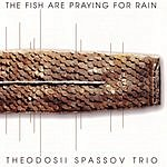 Theodosii Spassov Trio Fish Are Praying For Rain