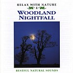 Natural Sounds Woodland Nightfall