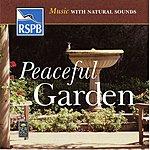 Medwyn Goodall Peaceful Garden