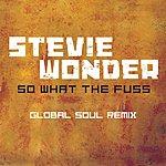 Stevie Wonder So What The Fuss (Global Soul Remix)