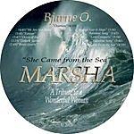 Bjarne O. Marsha