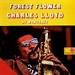 Charles Lloyd Forest Flower: Charles Lloyd At Monterey