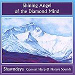 Shawndeya Shining Angel Of The Diamond Mind