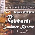 Reinhardt Summer Breeze (1998-2004)