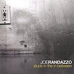 Joe Randazzo Stuck In The In Between