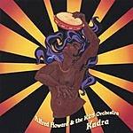 Alfred Howard & The K23 Orchestra Kudra