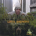 Analogy Life's Harmony (Humble Beginnings)