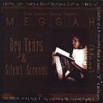 Megz Meggah Dry Tears & Silent Screams